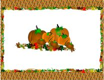 Halloween placemat. Place mat background on white of Halloween for fall in basket weave border Stock Images