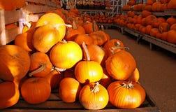 halloween pomarańczowy bani sklep Zdjęcia Royalty Free