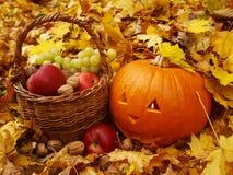 Halloween-pompoen Stock Foto
