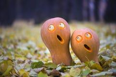 Halloween-pompoen in de herfst royalty-vrije stock afbeelding