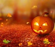 Halloween-pompoen in de herfstbos royalty-vrije stock afbeelding