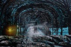 Halloween-pompoen in griezelige tuin Stock Afbeelding