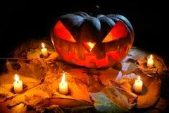 Halloween-Pompoen Jack O& x27; Lantaarn Stock Foto