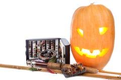 Halloween-pompoen met vlieg-vist op wit Stock Fotografie