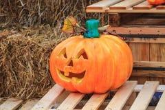 Halloween-pompoen op achtergrond Stock Afbeeldingen