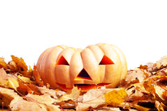 Halloween-pompoen op de herfstbladeren op witte achtergrond worden geïsoleerd die Royalty-vrije Stock Fotografie