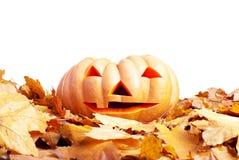 Halloween-pompoen op de herfstbladeren op witte achtergrond worden geïsoleerd die Royalty-vrije Stock Foto's