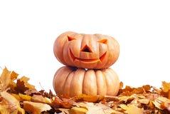Halloween-pompoen op de herfstbladeren op witte achtergrond worden geïsoleerd die Stock Foto