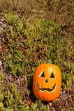 Halloween-pompoen op een gras Royalty-vrije Stock Afbeeldingen