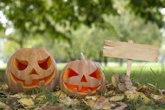 Halloween-pompoen op een open plek Stock Afbeeldingen