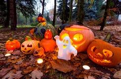 Halloween-pompoenen in het park, de herfstscène Stock Afbeelding