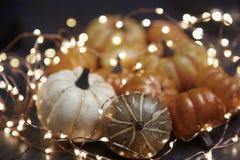 Halloween-pompoenen met verlichting stock afbeeldingen