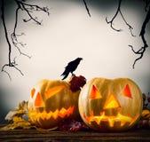 Halloween-pompoenen op hout met donkere achtergrond stock illustratie