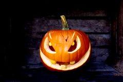 Halloween-Pompoenkwaad in de duisternisnacht royalty-vrije stock afbeeldingen