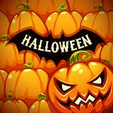 Halloween Poster With Bat Silhouette on the Pumpkins Royalty Free Stock Photos