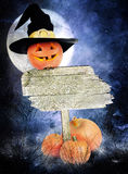 Halloween poster with pumpkins. Halloween poster with pumpkin in witch hat and a wooden board royalty free stock image