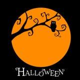 Halloween-Postkarte mit Eule Stockfoto