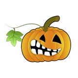 Halloween, potiron orange illustration libre de droits