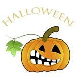 Halloween, potiron orange illustration stock