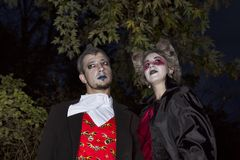 Halloween, przyjęcie, tło, karnawał, ubierał, maskuje, wampir, obraz stock