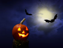 Halloween pumhkin and bats Royalty Free Stock Image