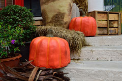 Halloween Pumkin Royalty Free Stock Image