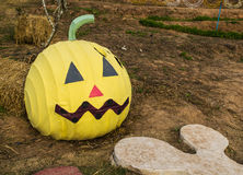 Halloween pumkin in garden. Halloween pumkin in the garden Royalty Free Stock Images