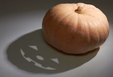 Halloween pumkin. Halloween pumpkin with horror shadow Royalty Free Stock Photo