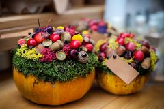 Fall floristic decoration. Stock Images