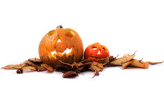 Halloween pumkins on the white background Royalty Free Stock Photos