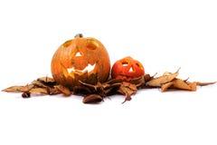 Halloween pumkins on the white background Royalty Free Stock Photos