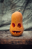 Halloween pumpa Royaltyfria Bilder