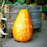 halloween pumpa royaltyfria bilder
