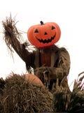 halloween pumpascarecrow Arkivfoto
