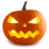 halloween pumpawhite Royaltyfria Foton