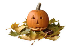 Halloween pumpkin. With maple leaves Stock Photography