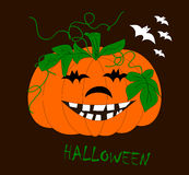 Halloween Pumpkin ... The image can be used for Halloween, then have a wide use in the production of posters and illustrations Vector Illustration