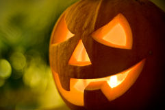 Free Halloween Pumpkin Royalty Free Stock Images - 11066829