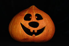 Halloween pumpkin. Pumpkin of a Halloween on a black background Royalty Free Stock Image