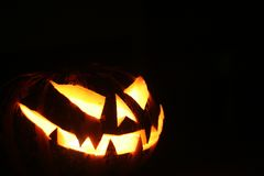 Free Halloween Pumpkin Stock Photos - 13462623