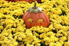 halloween pumpkin Στοκ εικόνα με δικαίωμα ελεύθερης χρήσης