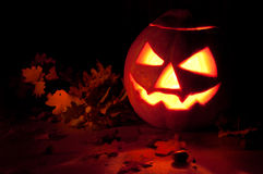 Halloween pumpkin. This is a photograph of a Halloween pumpkin royalty free stock photography
