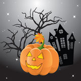 Halloween pumpkin. Against the backdrop of the castle, the trees and the night sky Stock Photography