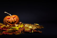 Halloween pumpkin. In the autumn leaves Royalty Free Stock Photography