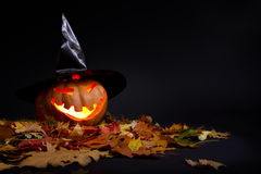 Halloween pumpkin. In the autumn leaves Stock Photos