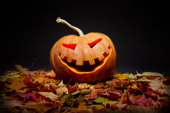 Halloween pumpkin. In the autumn leaves Royalty Free Stock Photos