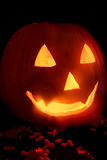 Halloween Pumpkin. Boo royalty free stock images