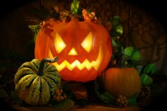 Free Halloween Pumpkin Stock Images - 3134674