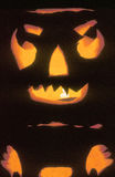 Halloween pumpkin. Traditional lighted Halloween pumpkin reflecting on black background royalty free stock images