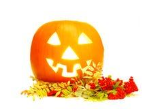 Halloween pumpkin. On white background Stock Photo